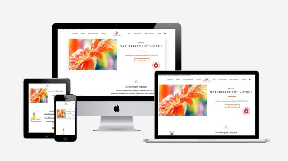 anishad avasta digital agency